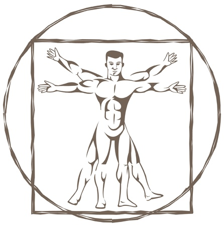 vitruvian man Stock Vector - 14291284