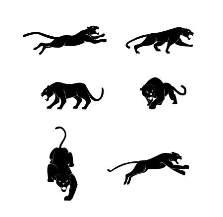leopard head: Panther set