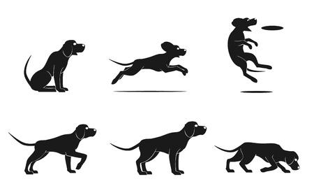 ridgeback: hound dog set Illustration