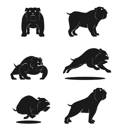 english bulldog: Bull Dog Set Illustration
