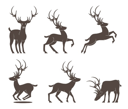 wild venison: Deer Set  vector
