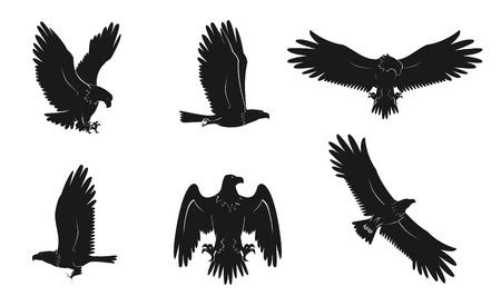 heraldic eagle: eagle