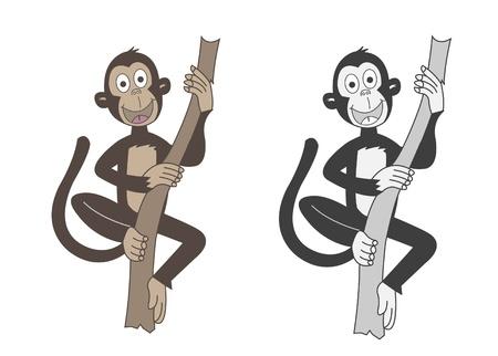 monkey Stock Vector - 14709622