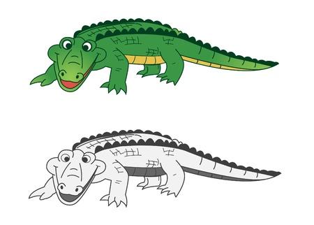 alligator isolated: crocodile Illustration