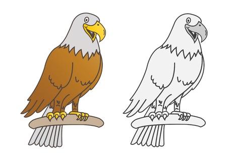 buzzard: eagle