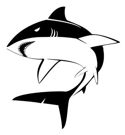 fin: shark