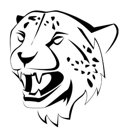 leopard head: cheetah Illustration