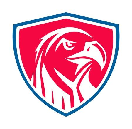 eagle shield and laurel wreath: eagle symbol Illustration