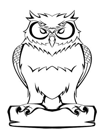 isolated owl: b�ho