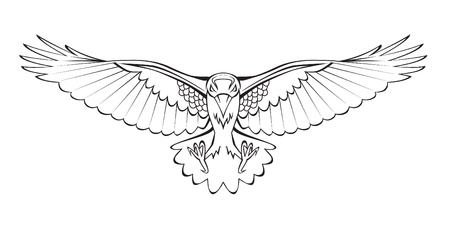 cuervo: cuervo volando Vectores
