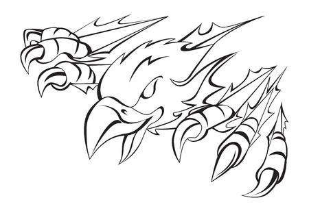 halcones: garra de águila Vectores