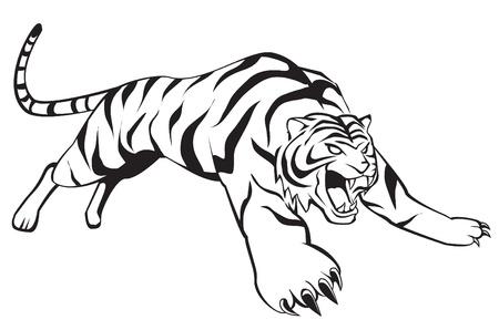bengals: tiger jump Illustration