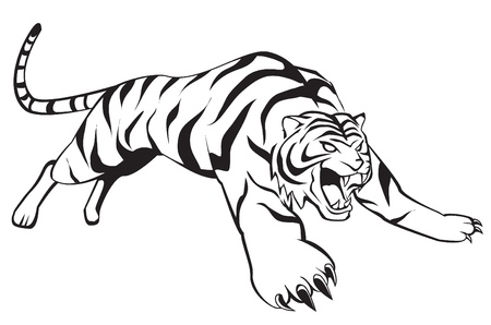tijger sprong