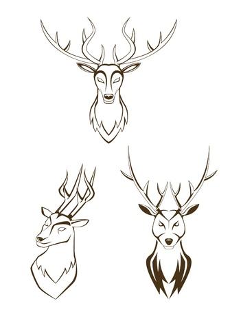 elk horn: establecer cabeza de ciervo