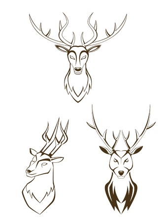 set deer head Stock Vector - 15614060