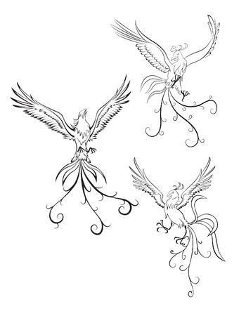color tribal tattoo: Phoenix Illustration