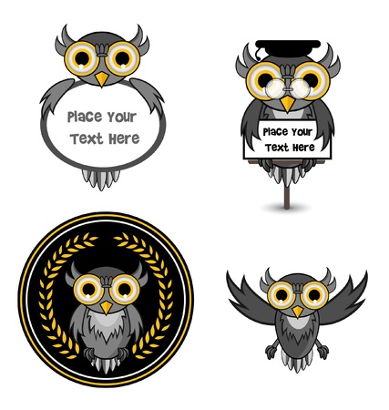 night owl: owl set