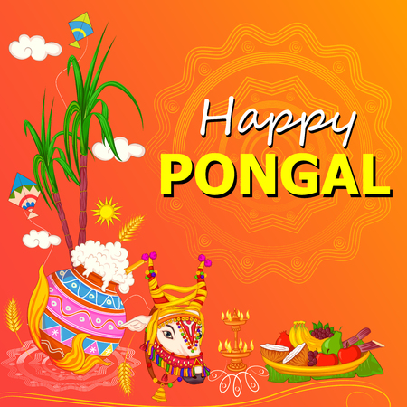 Vector design of Happy Pongal religious traditional festival of Tamil Nadu India celebration background Stock Vector - 91957378