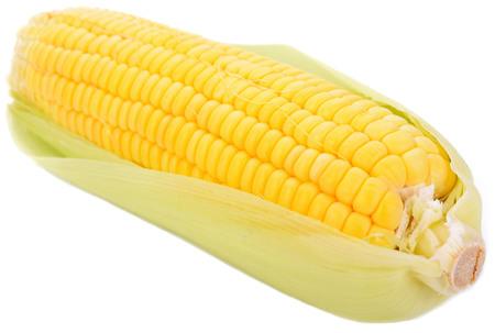Frischer Zuckermais lokalisiert auf weißem Hintergrund Standard-Bild