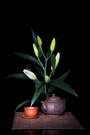 Still-life with lily branch  photo