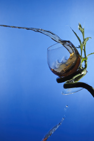Still life with brandy splash, glass and bamboo stem