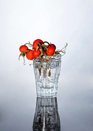 Rosehip branch in glass with water