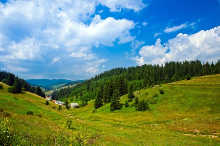The beautiful landscape in Bulgaria. Forest and mountain view