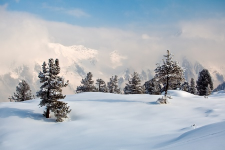 Trees covered with hoarfrost and snow in mountains. The most famous skiing resort Mayrhofen, Austria