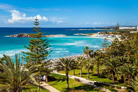 Küste von Zypern, Mittelmeer. Strand, Palmen und kristallklaren Meer.