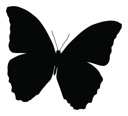 butterfly isolated: Silhouette of butterfly, isolated on white, vector illustration of butterfly