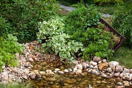 back yard pond: Small pond with stones in landscape garden design