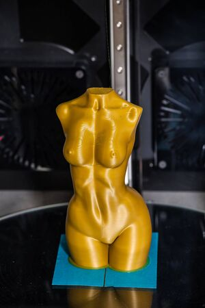 3d nude: Figure of nude woman printed on 3d printer
