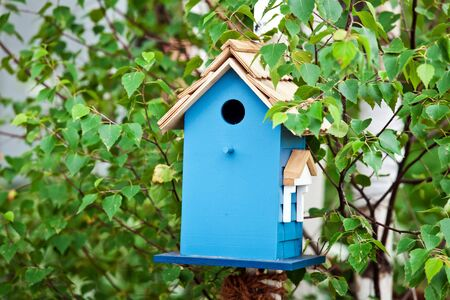 Blue birdhouse on the tree. Wooden house for birds among the leaves Stock Photo