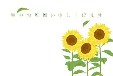 ひまわりの夏のグリーティング カード  イラスト・ベクター素材