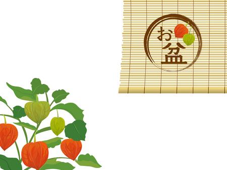 green lantern: Chinese lantern plants and bamboo blind frame