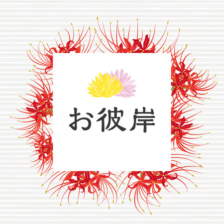 equinox: cluster amaryllis flower vector frame