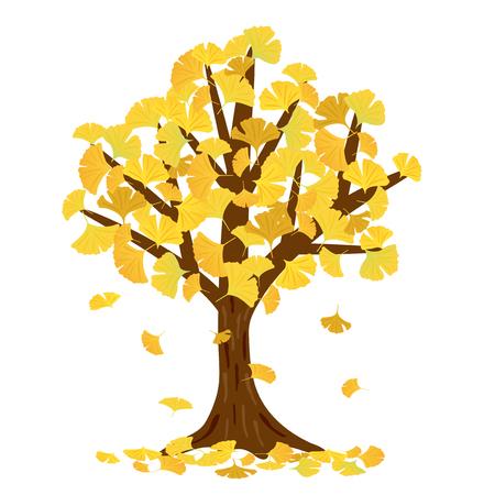 Ginkgo tree vector illustration