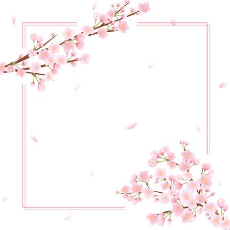 Marco del vector de la flor de cerezo en la presentación llana. Foto de archivo - 94973753