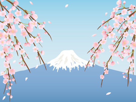 Mt. Fuji which is the highest mountain in Japan and cherry blossoms