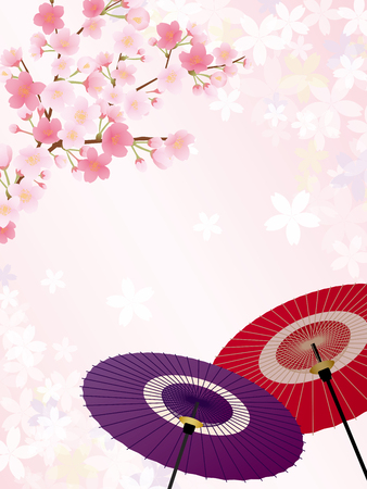 Japanese umbrella and cherry blossoms vector background.