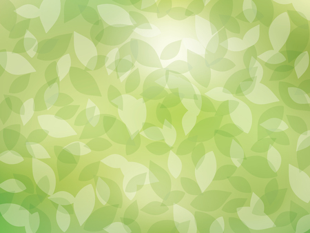 Fresh green vector background