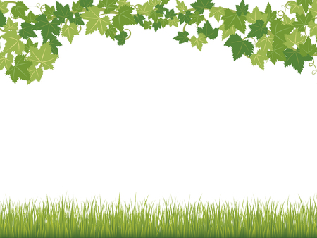 Fresh ivy leaves vector frame. Ilustrace