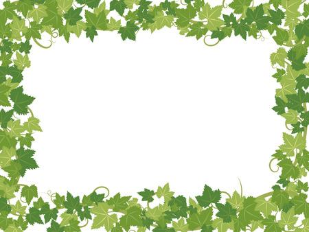 Fresh ivy leaves vector frame. Иллюстрация