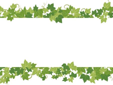 Fresh ivy leaves vector frame. Stock Illustratie