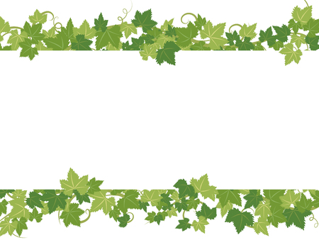 Fresh ivy leaves vector frame. Illustration