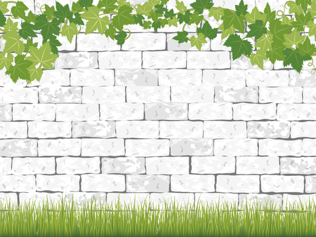 Fresh ivy leaf vector frame on white brick background.