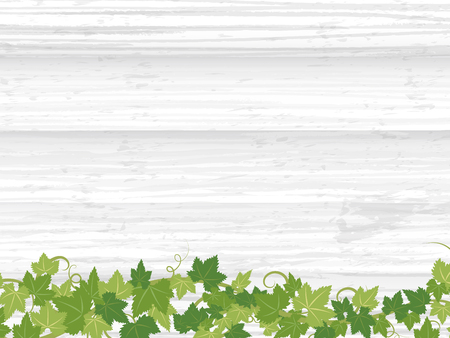 Fresh ivy leaf vector frame on wooden texture background.