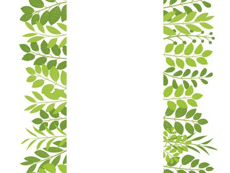 Fresh leaf vector frame.