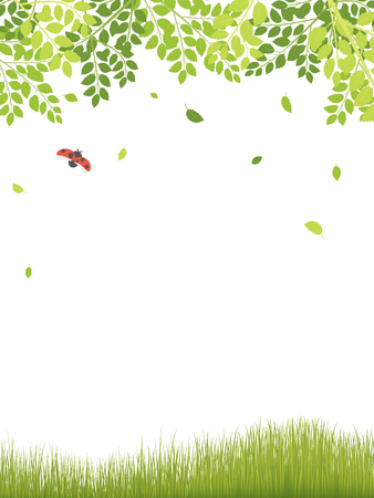 Fresh leaf and ladybug vector frame. Ilustrace