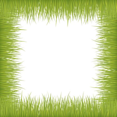 Fresh grass on vector frame over white background.
